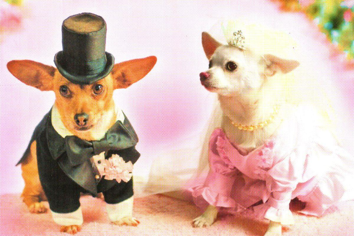 "Календарь малый ""Жених и невеста"""