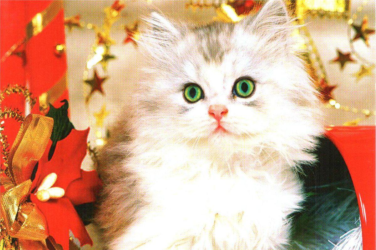"""Календарь малый """"Новогодний котенок"""""""