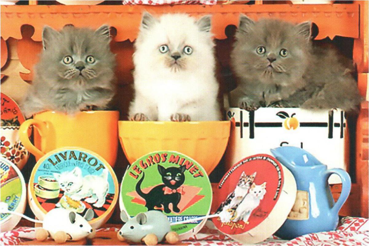 """Календарь малый """"Три котенка в чашках"""""""