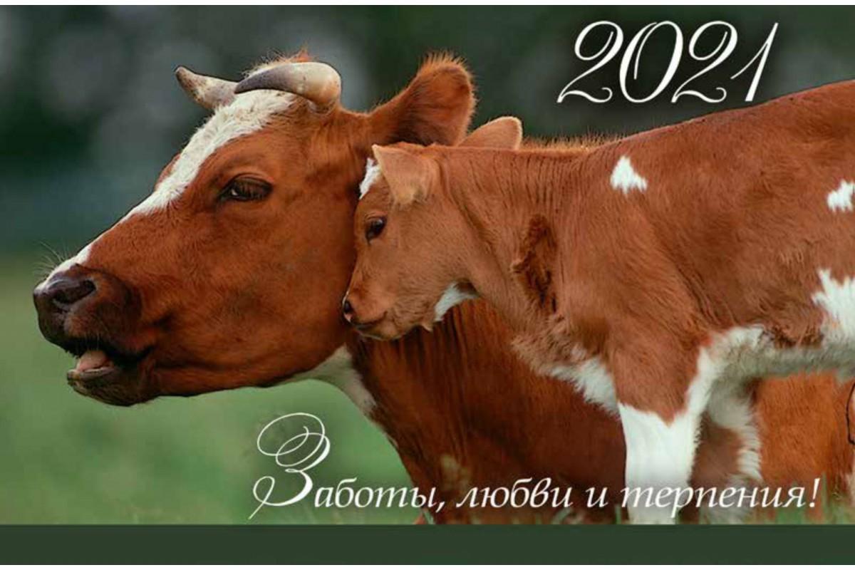 Календарь малый с символом года - 20