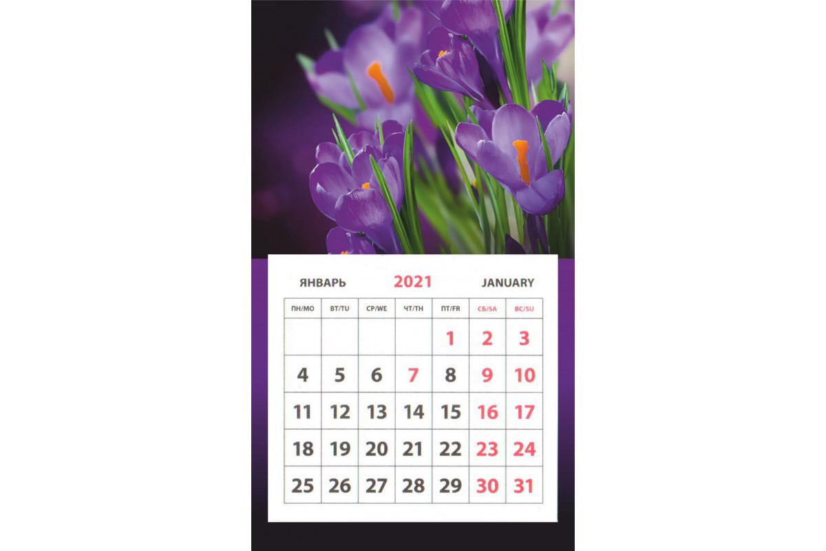 Календарь на магните - Крокусы