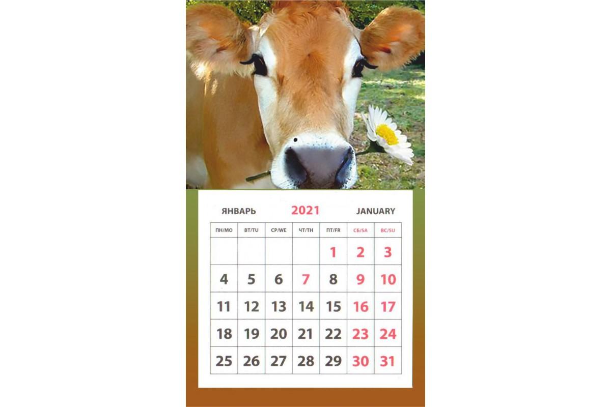 Календарь на магните - Символ Года #6