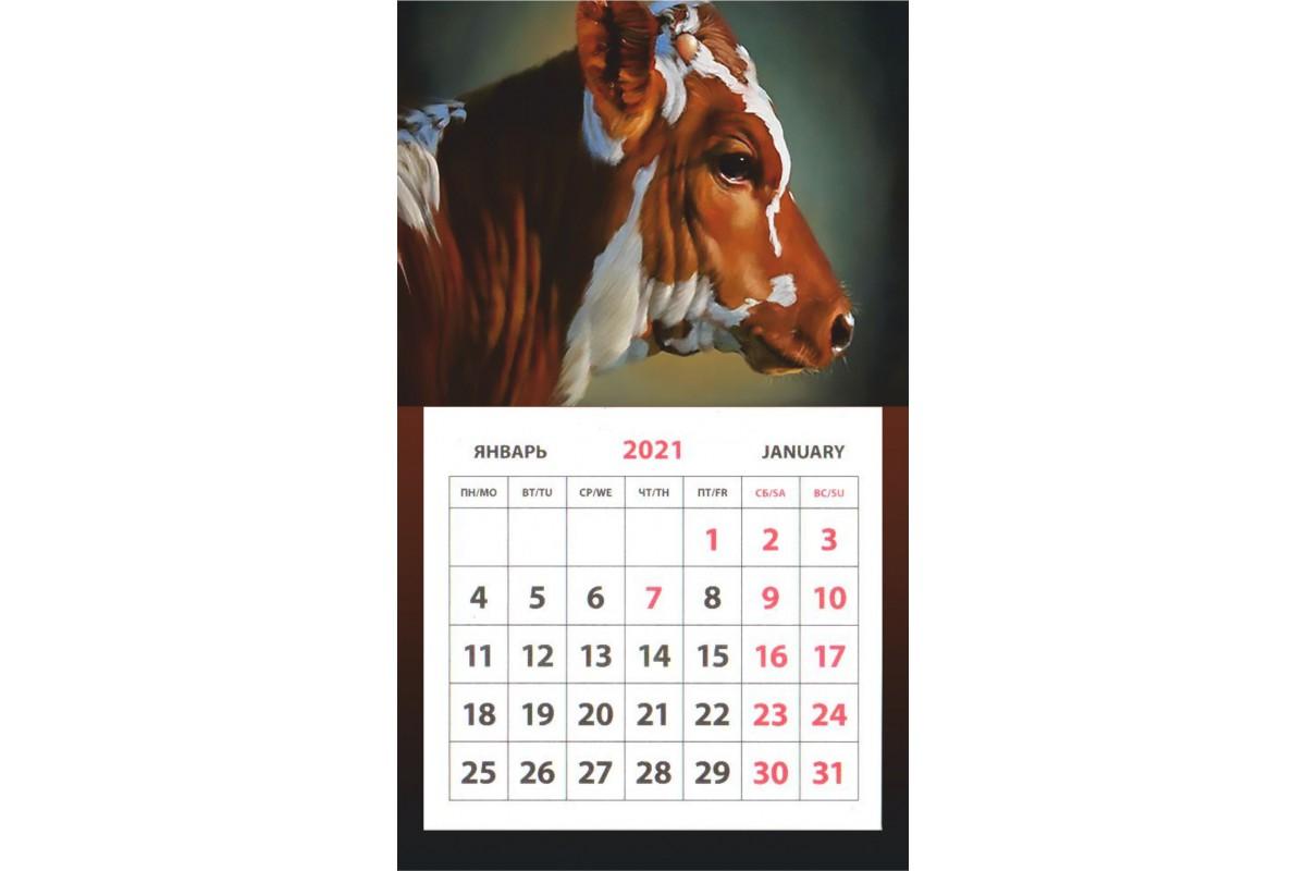 Календарь на магните - Символ Года #4