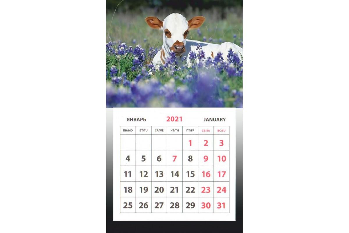 Календарь на магните - Символ Года #3