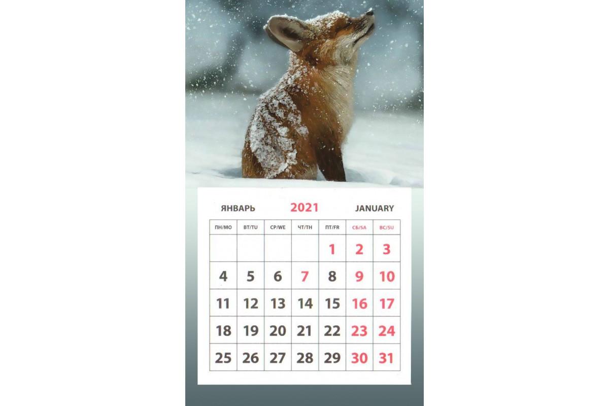 Календарь на магните - Лиса